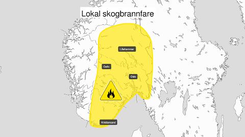 SKOGBRANNFARE: Hele Østlandet er omfattet av skogbrannfare på moderat nivå.