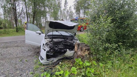 UTFORKJØRING: 18-åringen mistet lappen etter å ha kjørt av veien.