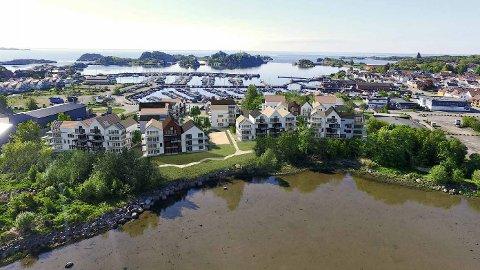 FULL STOPP: To store prosjekter på Risøya blir nå trolig utsatt på ubestemt tid.