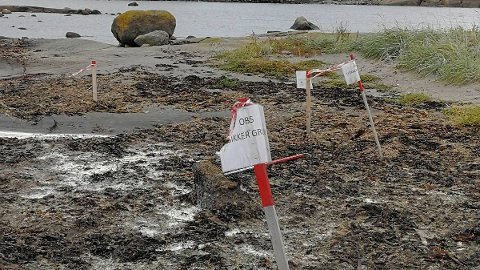 USIKKER GRUNN: Disse skiltene møtte ØPs tipser på Kuøya.