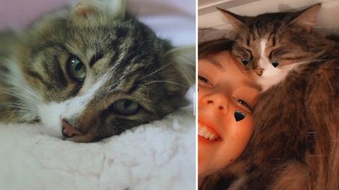 STERKT BÅND: Katten Pluffy (3) og datteren til Belinda, Pia-Elene (15) har et sterkt bånd til hverandre