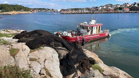 Tauet strandrydderne hadde begynt å dra i på Teineholmen utenfor Engelsviken, viste seg å være begynnelsen på noe kjempestort: Her er skjærgårdstjenesten i ferd med å få noen av de mange tonnene med sildenot på land.