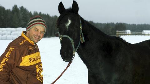 LIKER HVERANDRE: Bjørn Steinseth og Perfect Stent setter pris på hverandre. Hesten var alvorlig skadet og kunne vært sendt på slakterhuset, men eier og trener ville det annerledes. Nå er Perfect Stent en av mange vinnere hos Stall Steinseth.