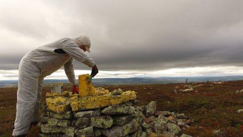 MALER: Roy Pedersen har funnet fram maling og er i ferd med å male en grenserøys opp ved Brynflået i Ljørdalen.