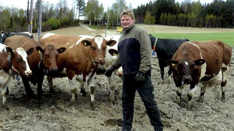 VIS HENSYN: Leder i Elverum bondelag, Amund Grindalen, ønsker at alle viser hensyn til dyra på nyttårsaften. - Vi ønsker ikke at folk skal slutte å feire med fyrverkeri, kun at det skal bli gjort ansvarlig og innenfor de tidsrammene som er satt.
