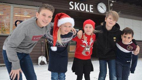 VIL HJELPE: Elevene på Lund skole i Løten støtter SOS-barnebyer; fra venstre Mathias Cae Ottosen, Ida Emilie Ødegård, Nora Helene H. Palerud, Ole Ebbe Sveen Røhne og Humman Aljuhmany.
