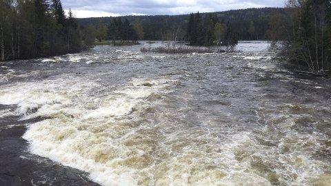 FLOMTOPP: I begynnelsen av mai var Glomma én meter og 29 centimeter over normal vannstand i Elverum. Siden den gang har vannstanden synket betraktelig.