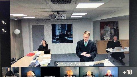 STATENS MANN: Advokat Asgeir Nygård i Høyesteretts videooverførte sak forsvarer statens uttak av ulv.