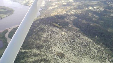 OVERVÅKET SKOGBRANN: Dette bildet fra skogbrannen i Stor-Elvdal ble tatt cirka klokka 15 søndag. - et par timer etter at brann og redning hadde avsluttet og dratt. Det ble gjennomført overflyvning som et ledd i kontroll av området.
