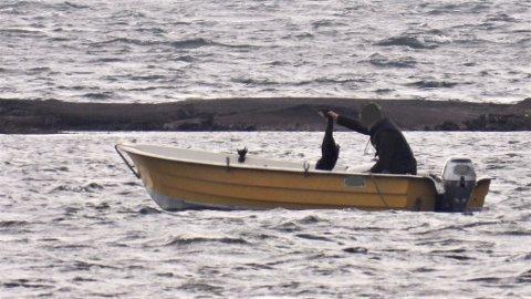 FUGLEJAKT: Flere døde skarv ble lempet ombord i båten.