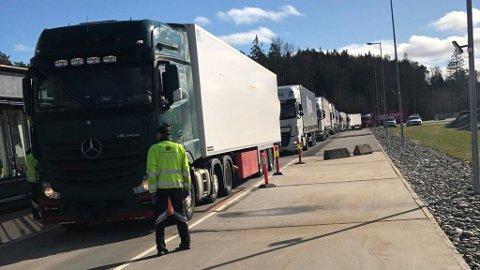Antallet tungbiler over vekten på Svinesund kontrollstasjon er omtrent som normalt om dagen. Dette bildet er fra mandag 16. mars og har ingen ting med episoden der en sjåfør hostet på kontrolløren å gjøre. Foto: Statens vegvesen.