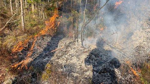 Meteorologisk institutt har sendt ut et varsel, der de advarer mot økt skogbrannfare. Dette bildet er tatt fra en skogbrann ved Nedre Låstjern tidligere i år.