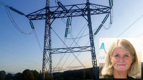 – Det er ingen som vet hvor høye strømprisene kan bli utover høsten og vinteren, sier Line Hovrud i Kraftriket, strømselskapet til Ringerikskraft og Valdres Energi.