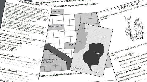 PISA-undersøkelsen inneholder spørsmål om både matematikk, naturfag og leseforståelse. Foto: (Montasje/OECD/UiO)