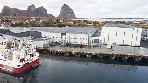 Pelagia AS på Træna har investert nesten 60 millioner kroner i et nytt fryseanlegg, til høyre i bildet. Fabrikksjefen mener det beviser at den Bergens-administrerte bedriften satser på Træna.