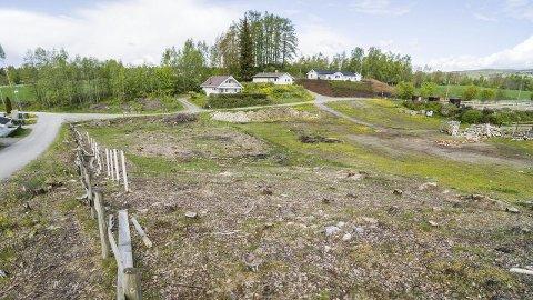Lykseth: Bygging av 40 boenheter der hestene en gang beitet, kommer kanskje i gang til høsten. Nydalsenga skimtes bak trærne til venstre i bildet.alle foto: ole johan storsve