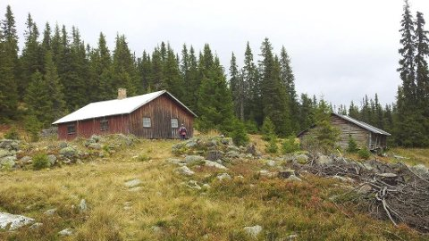 Eiendomsskatt: Kommunen skrevet ut eiendomsskatt for alle setrene i Ringsakerfjellet. Det er ikke rett, mener advokat.  Foto: Arkiv