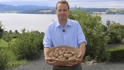 Potet i fokus: Årets marked skal først og fremst handle om poteten. Andreas Viestad kommer for å vise noen av bruksområdene. Foto: Ringsaker kommune