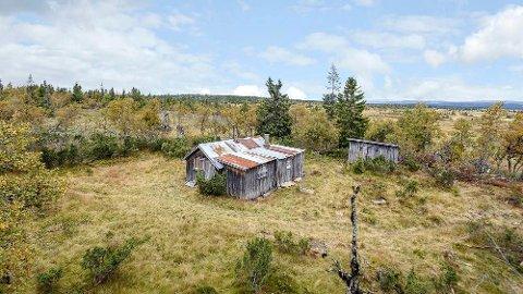 – Selve hytta er kondemnabel, men den ligger flott til, sier eiendomsmegler Bente Holen Bergseng. Foto: Lars Marius Bekkevold/Meglerfoto