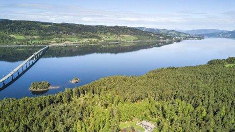 Moskogen: Det er store sjanser for at et nytt sykehus kan bli plassert i Moskogen i Moelv.