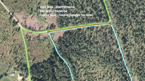 Omstridt: Jordskifteretten har kommet fram til at Nybakken ikke har eksklusiv bruksrett på skogsbilvegen beliggende på gnr. 816/1 fra grensa mot gnr. 88/7 nordover i en strekning på 130 meter til kryss. Illustrasjon