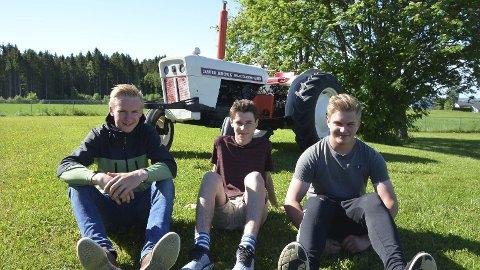 Fornøyde: Thomas Stensby, Martin Langseth og Christoffer Thorud i 10. klasse på Nes ungdomsskole har løst valgfaget teknologi praksis på en alrternativ måte ved å restaurere en gammel David Brown traktor.Foto: Jeanette Sandbæk Håland