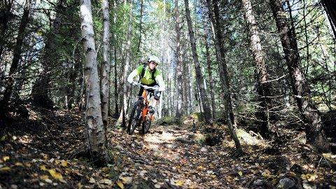 Terrengsykling: Medlemstallet i sykkelklubben er i vekst, men Byhagan er dårlig egnet til å arrangere stevner. - Veldre Sag er det området i Brumunddal og omegn som egner seg best, mener Brumunddal Sykleklubb, som  håper å kune arrangere stevne der allerede i september i år. Arkivfoto