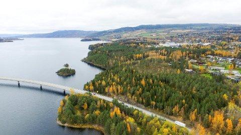 Aktuell tomt: Moskogen i Moelv kan blir stedet hvor det nye Mjøssykehuset havner.