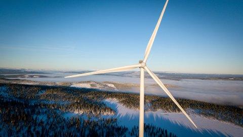 SIER STOPP: Fylkestinget i Hedmark er enig med fylkesrådet og sier nei til mer vindkraftutbygging. (Dronefoto: Tor Bergebakken)