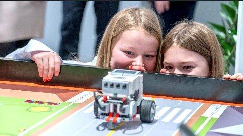 Sommerskole: Barn og unge i Ringsaker kan få mer læring i sommer.
