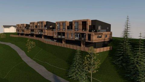12: Prosjektet er planlagt med 12 boliger.