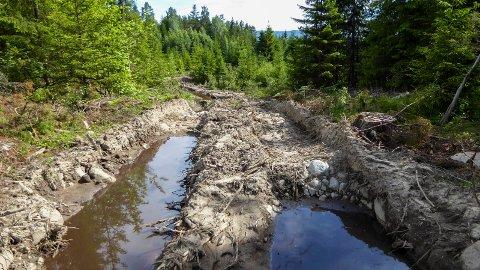 Spor etter skogsmaskiner laget dype sår i landskapet ved Nakkerud. Men dette skal rettes opp igjen, ifølge Viken skog.