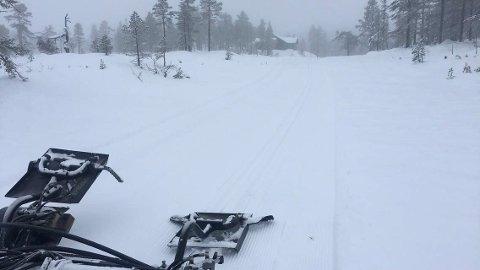 SKIFØRE: På Vikerfjell er det fint skiføre og nykjørte løyper.