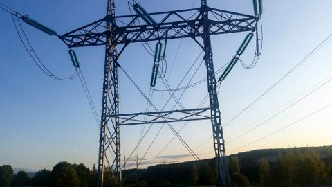 STRØMPRISER: ACER har skylden for de vanvittig høye strømprisene, mener Torbjørn Gundersen.