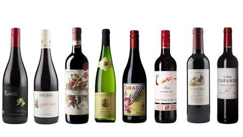 BESTE KJØP: Dette er polets beste vinkjøp til under 150 kroner, ifølge Nettavisens vinpanel. Foto: Vinmonopolet