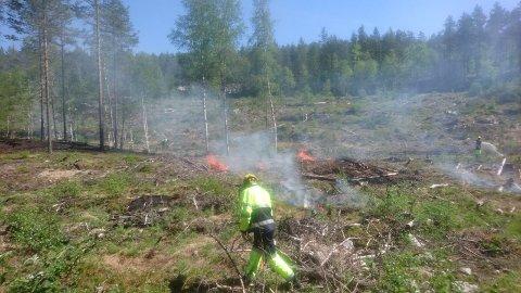 SKOGBRANNFARE: Slike scener ønsker ikke brannsjefen å se i Tinn. Det har tørket godt opp i skog og mark i Tinn.  Brannsjefen ber folk respektere bålforbudet. (Illustrasjonsbilde.  Skogbrannøvelsen i Hovin i 2018)