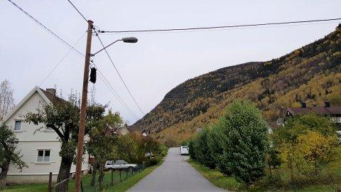 MÆL: Flere av gatelysene på Rollagsveien fungerer ikke. (foto : Trygve Lampe)