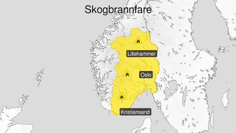 VARSEL: Meteorologisk institutt sender onsdag ut et gult farevarsel for skogbrannfare.