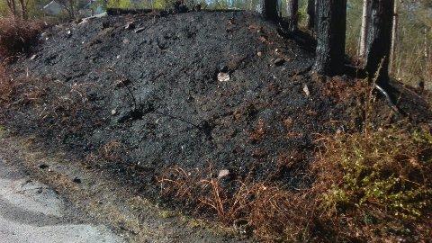 SVIDD: Brannvesenet måtte slukke en gressbrann ved Sætrehallen onsdag ettermiddag.