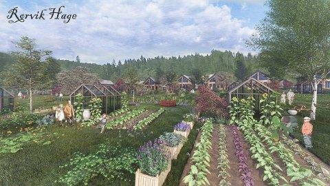FRITIDSPARADIS: Slik ser Anwar og arkitektene for seg at parsellhagene og kolonihagen skal bli.