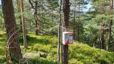HER: Månedens post for august finner du på Tiurmyrås.