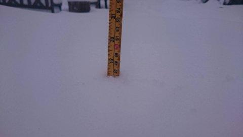 MYE SNØ: På Hvitstein i Vestred Kodal målte de 46 centimeter snø søndag morgen. Da var det vanskelig å komme seg ut med bil.