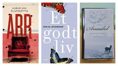 UKAS TIPS: Sandefjordbibliotekene gir deg tips om gode bøker. Dette er tips for voksne i uke fem 2019.