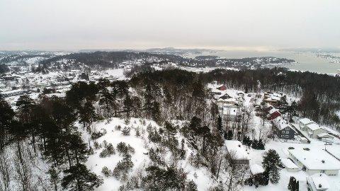 RØDSÅSEN: A/S Thor Dahl jobber med en alternativ plan for boliger i Rødsåsen, etter at kommunestyret avviste de opprinnelige planene.