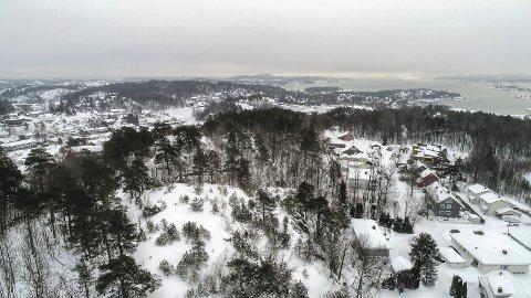 RØDSÅSEN: I løpet av høsten lanserer A/S Thor Dahl sin Plan B for boligbygging i Rødsåsen.