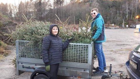 HENTER TREET DITT: Elevene fra Lille-Varden kan hente juletreet ditt hjemme hos deg.