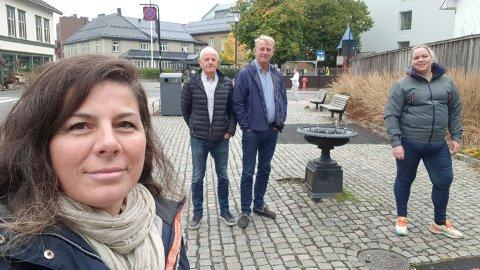 SIER NEI: Høyres gruppe i planutvalget foreslo å si nei til å selge deler av Pausteparken til Brunlanes Eiendom, f.v. Yllka Neziri, Lars Viggo Holmen, Trond Clausen og Henriette Elnan Steinsholt.