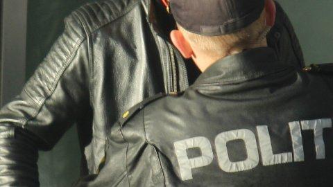 Politiet beslagla en lang rekke våpen under en ransakelse på Lutsi i fjor vår. Personene på bildet har ingenting med saken å gjøre. Arkivfoto: Andreas Kydland.