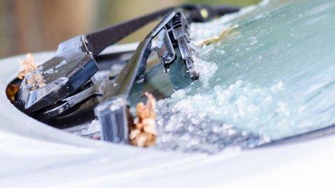 Fastfrosne viskerblader kan skape kostbare problemer i kulden. Og det dekkes ikke av bilforsikringen din.