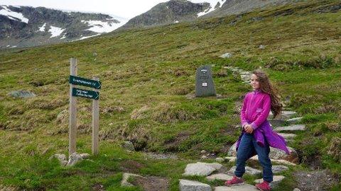 Sherpatrappen opp Prestholtstien til Hallingskarvet er blitt en av Geilos mest populære attraksjoner sommerstid. I fjor gikk 45.000 mennesker turen.